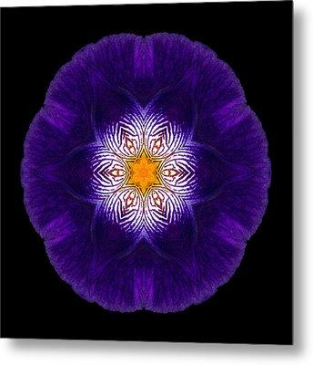 Purple Iris II Flower Mandala Metal Print
