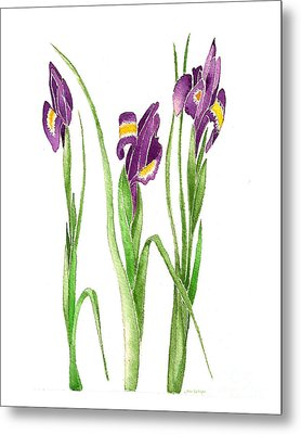 Metal Print featuring the painting Purple Iris  by Nan Wright