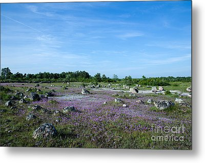Metal Print featuring the photograph Purple Landscape by Kennerth and Birgitta Kullman
