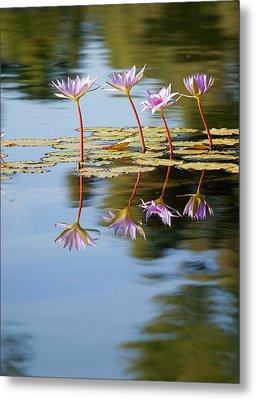 Purple Lillies Metal Print
