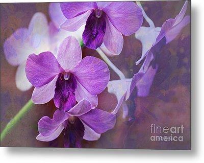 Purple Orchids Metal Print by Sally Simon