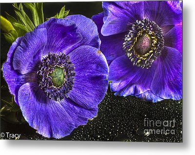 Purple Passion Metal Print by Tracy  Hall