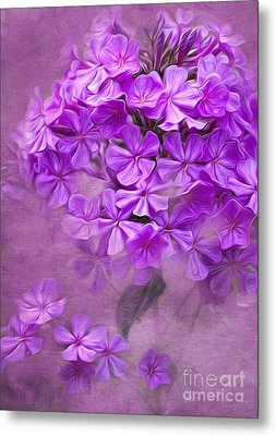 Purple Phlox Metal Print by Lena Auxier