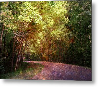 Purple Road Metal Print by Terry Eve Tanner