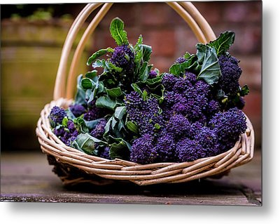 Purple Sprouting Broccoli Metal Print by Aberration Films Ltd