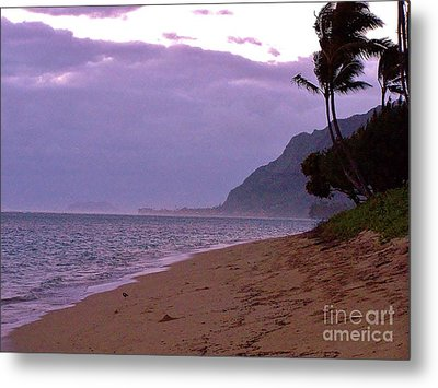 Purple Sunset After The Storm Metal Print by Brigitte Emme