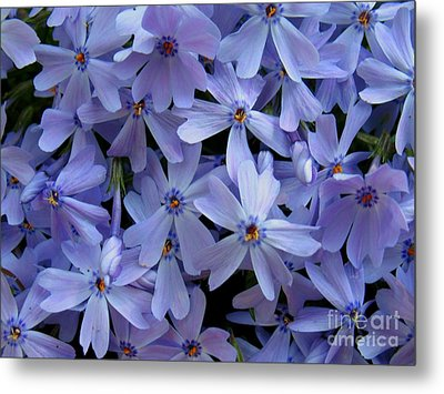 Purple Sunshine Metal Print by Patti Whitten
