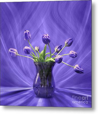 Purple Tulips In Purple Room Metal Print by Johnny Hildingsson