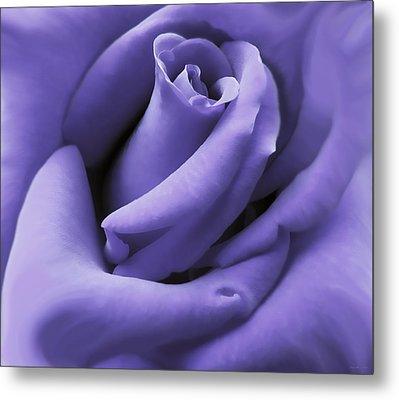 Purple Velvet Rose Flower Metal Print