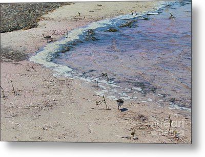 Metal Print featuring the photograph Purple Waters by Jeanne Forsythe