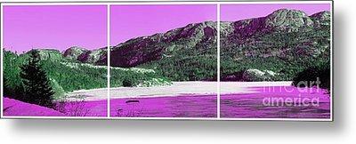 Purple Winter Triptych Metal Print by Barbara Griffin
