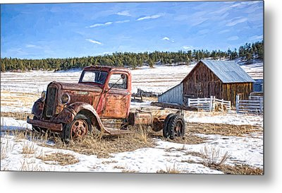 Put Out To Pasture Metal Print