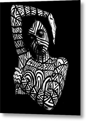 Pw Ml005 Metal Print by Kristen R Kennedy