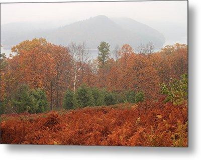 Quabbin Reservoir Late Autumn Oak And Fern Foliage Metal Print by John Burk