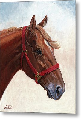 Quarter Horse Metal Print by Randy Follis