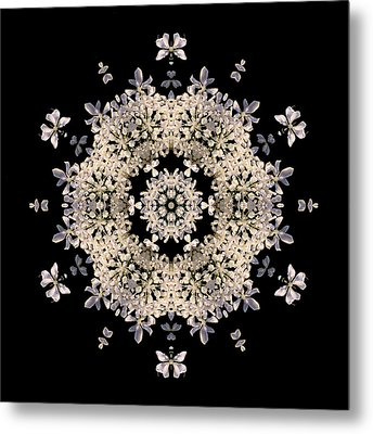Queen Anne's Lace Flower Mandala Metal Print by David J Bookbinder