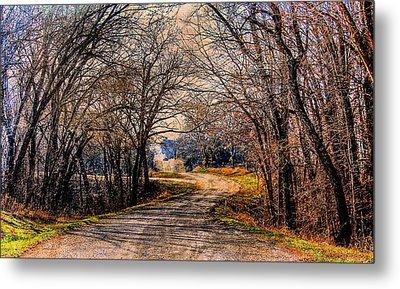 Quiet Country Road Metal Print by Karen McKenzie McAdoo