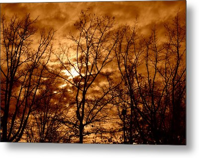 Quiet Metal Print by Heather L Wright