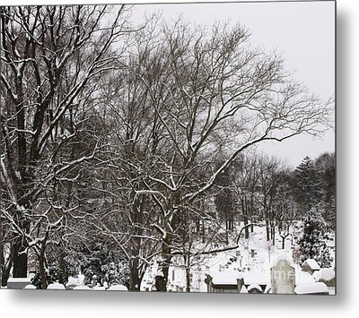 Metal Print featuring the photograph Quiet by Melissa Stoudt