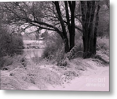 Quiet Morning After Snowfall Metal Print by Carol Groenen