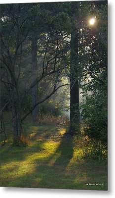 Metal Print featuring the photograph Quiet Morning by Tannis  Baldwin