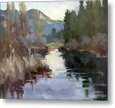 Quiet Reflections At Harry's Pond Metal Print