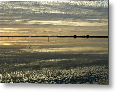 Quiet Time Metal Print by Sandy Molinaro