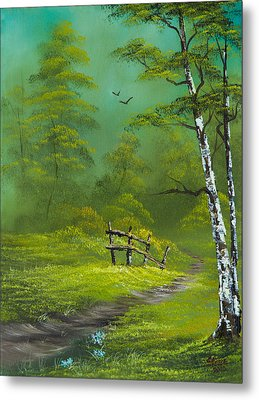 Quiet Trail Metal Print by C Steele