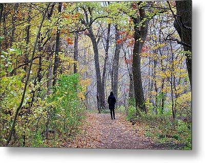 Quiet Walk In The Woods Metal Print