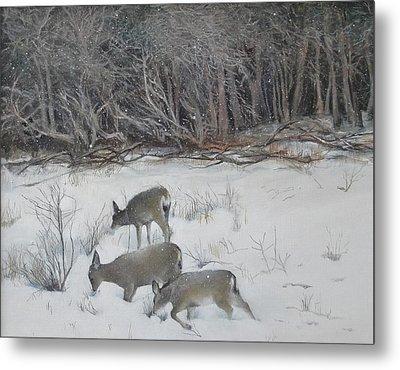 Quiet Winter Day  Metal Print by Terri Ana Stokes