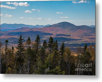 Quill Hill Metal Print by Brenda Giasson