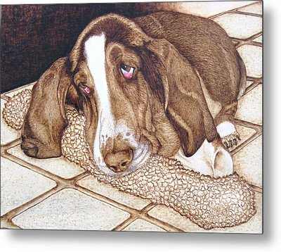 Quincy's Time Out Metal Print by Roger Storey