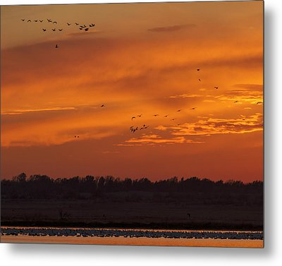 Metal Print featuring the photograph Quivira Sunset 1 by Rob Graham