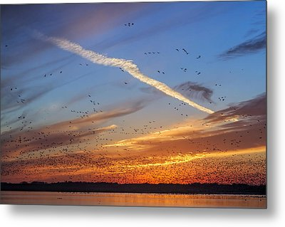 Metal Print featuring the photograph Quivira Sunset 2 by Rob Graham