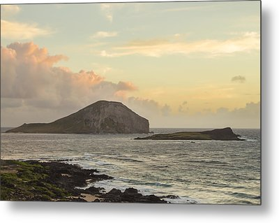 Rabbit And Turtle Island At Sunrise 1 Metal Print by Leigh Anne Meeks