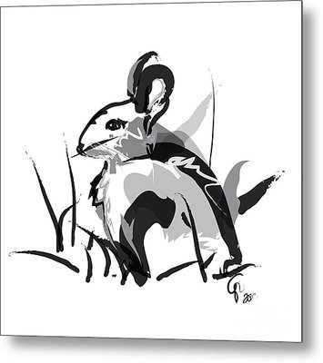 Rabbit Bunny Black White Grey Metal Print by Go Van Kampen