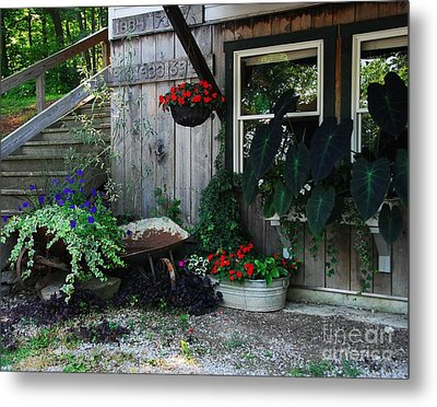 Rabbit Hash Morning Metal Print by Mel Steinhauer
