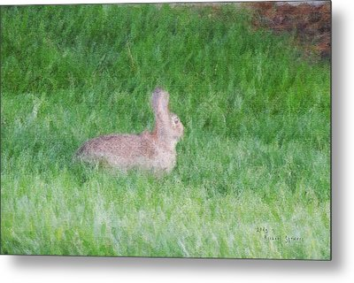 Rabbit In The Grass Metal Print by Michael Stowers