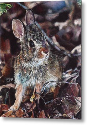 Metal Print featuring the painting Rabbit In The Woods by Joshua Martin