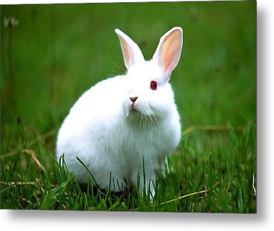 Rabbit On Grass Metal Print by Lanjee Chee