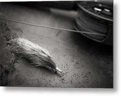 Rabbit Strip Fly Metal Print by Chad Simcox