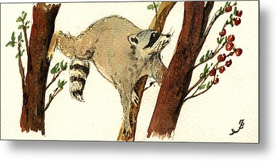 Raccoon On Tree Metal Print by Juan  Bosco