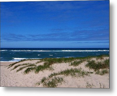 Race Point Beach Metal Print by Catherine Gagne