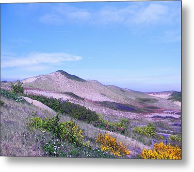 Metal Print featuring the photograph Race Point Dunes by David Klaboe