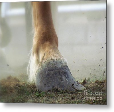 Metal Print featuring the photograph Life Racing by France Laliberte