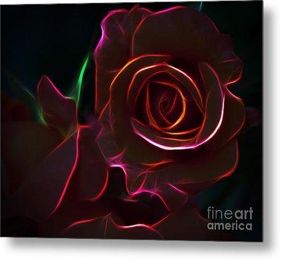 Radiant Rose  Metal Print