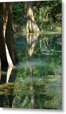 Radium Springs Creek In The Summertime Metal Print