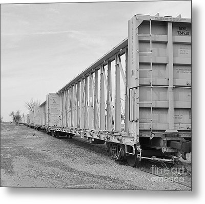 Rail Cars Metal Print