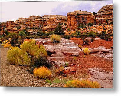 Rain At The Needles District 2 Metal Print by Marty Koch