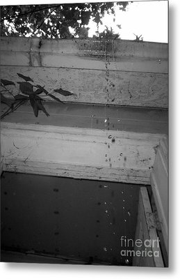 Rain Drops Metal Print by Michael Krek